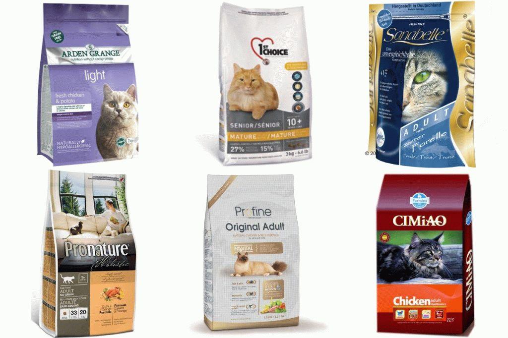 Холистики для кошек: рейтинг и список консервов, влажных и сухих кормов