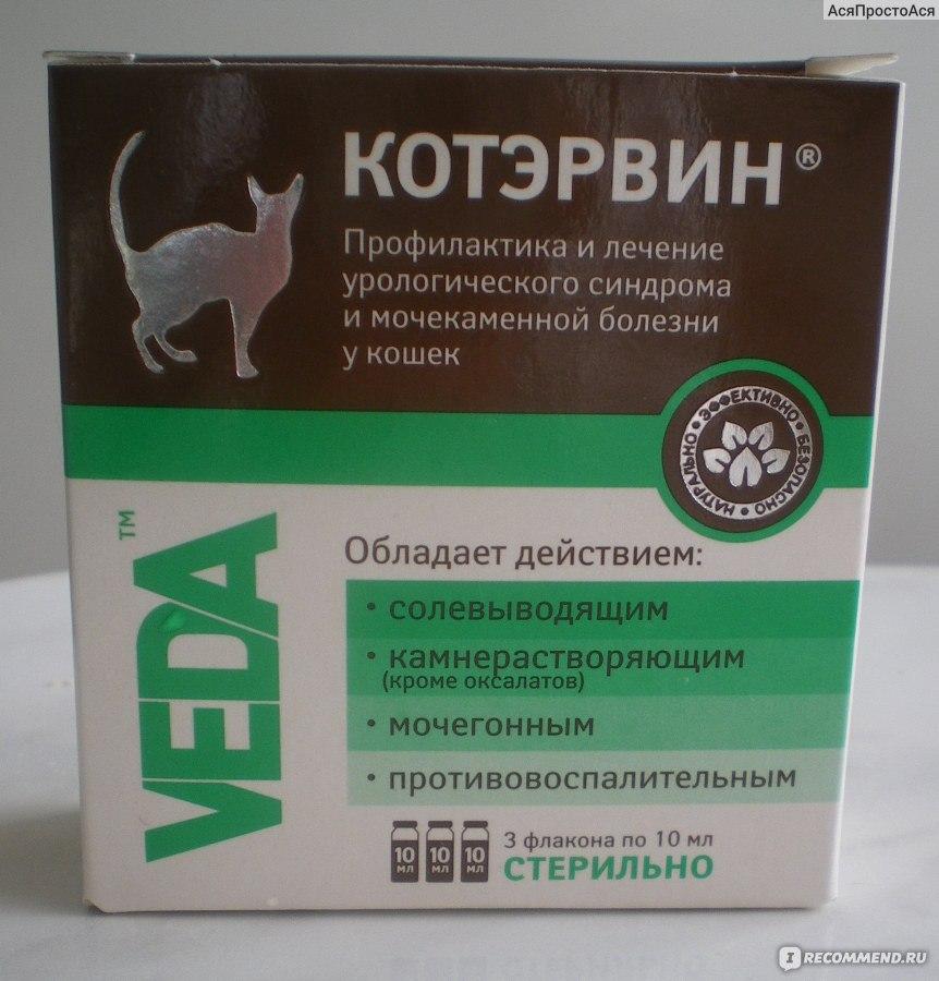Канефрон для кошек и собак инструкция по применению лекарства канефрон в ветеринарии состав дозировка отзывы