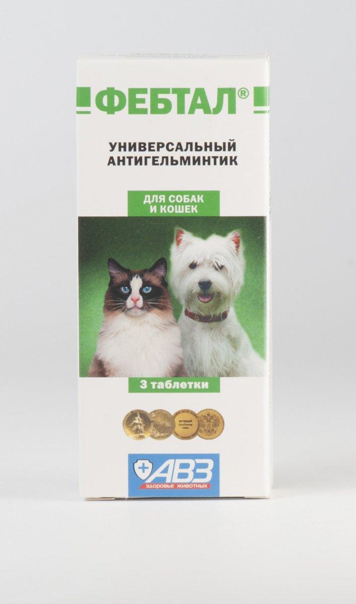 Фебтал для кошек - инструкция по применению, цена, отзывы | сайт «мурло»