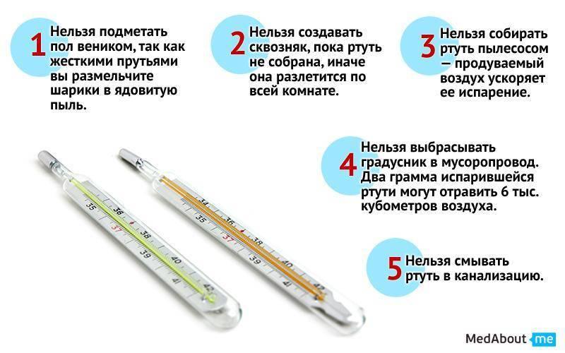 Как измерить температуру кошке