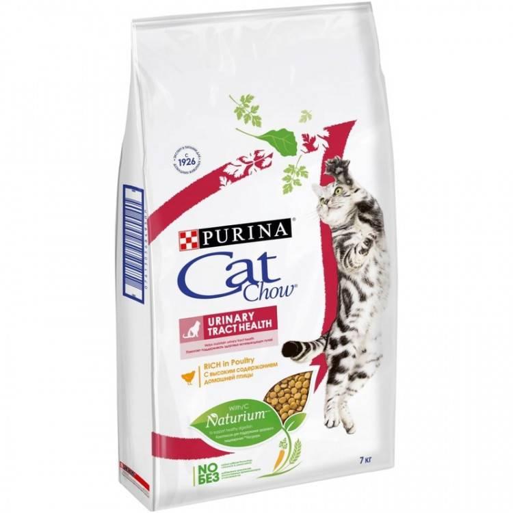 Корм для кошек для выведения шерсти: когда необходим, как действует, популярные марки, отзывы ветеринаров и владельцев