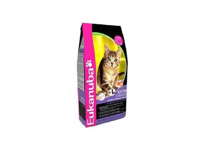 Корм эукануба для кошек: состав, применение, разновидности