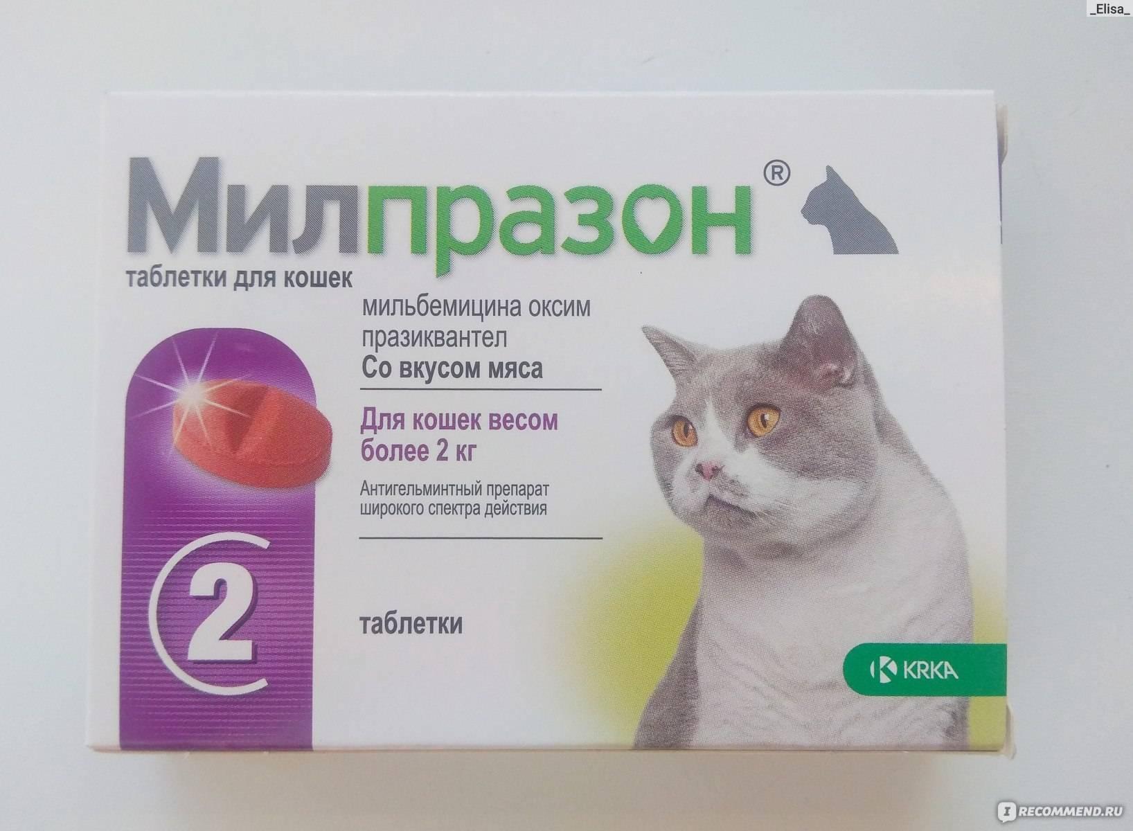Инструкция по применению альбена в ветеринарии: для животных и птиц