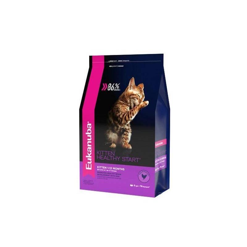 Eukanuba корм для кошек: отзывы, где купить, состав