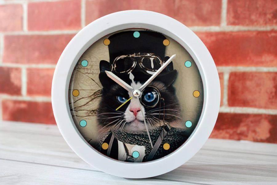 Биологические часы диктуют человеку, когда умереть