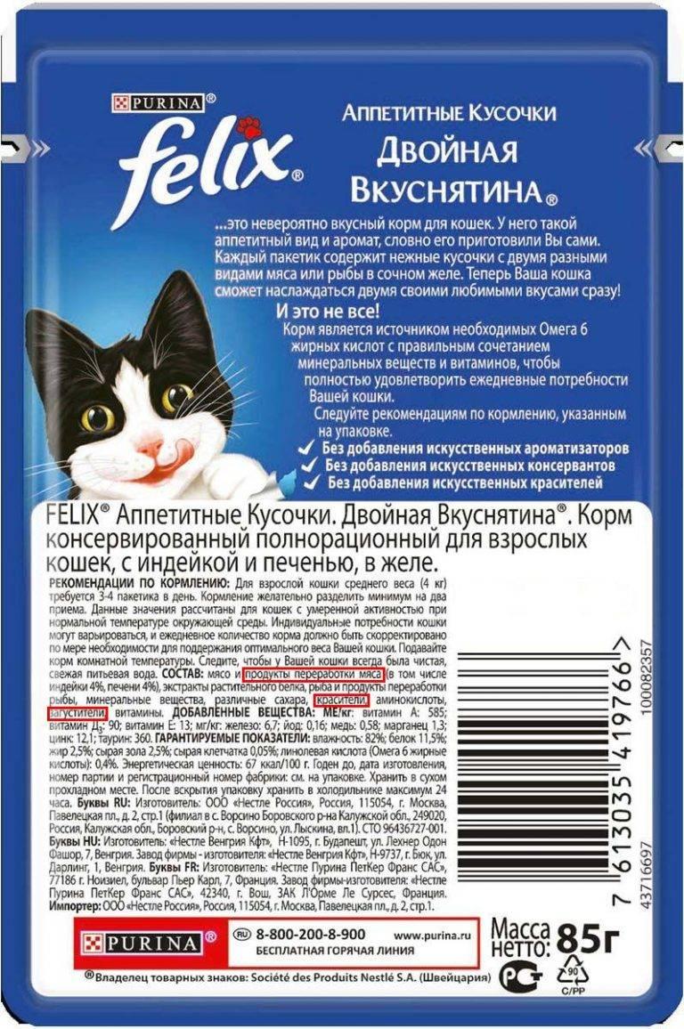 Выбираем самый качественный корм для кошек