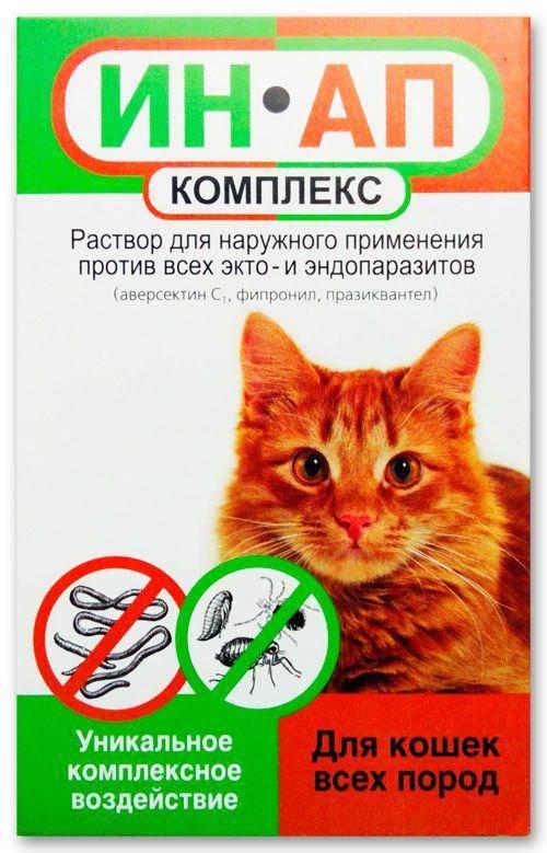 Ин-ап комплекс для кошек: инструкция и показания к применению, отзывы, цена