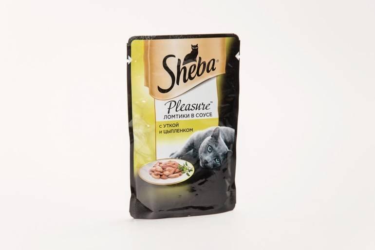 Корм для кошек «шеба»: отзывы. sheba - консервы для кошек. советы ветеринаров