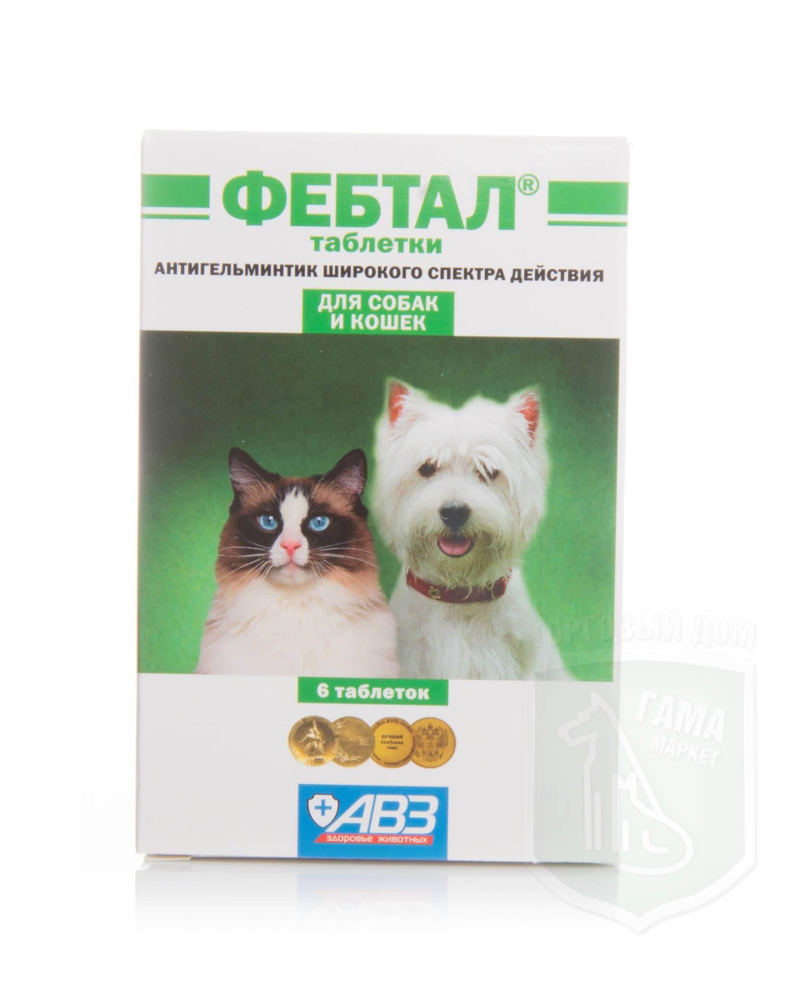 Фебтал: инструкция по применению для кошек и собак