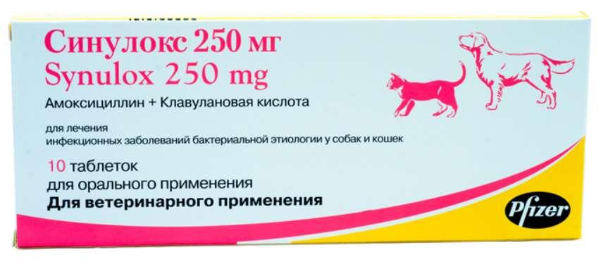 Синулокс для лечения кошек
