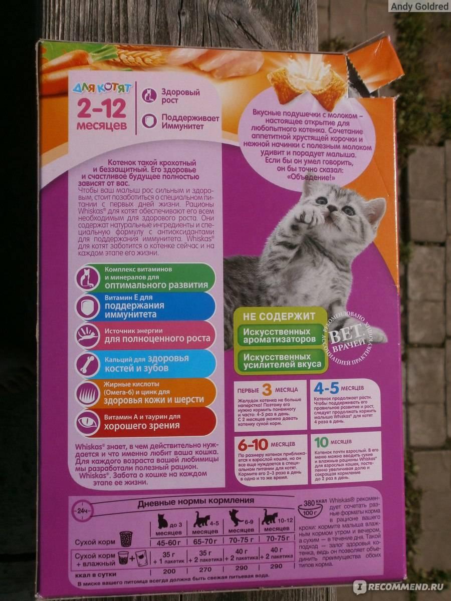 Корм для кошек вискас – из чего состоит и насколько полезен?
