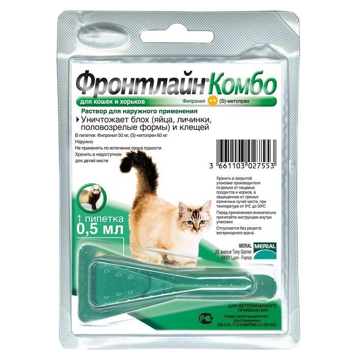 Средства для кошек от блох, клещей и глистов: лучшие эффективные препараты и народные способы