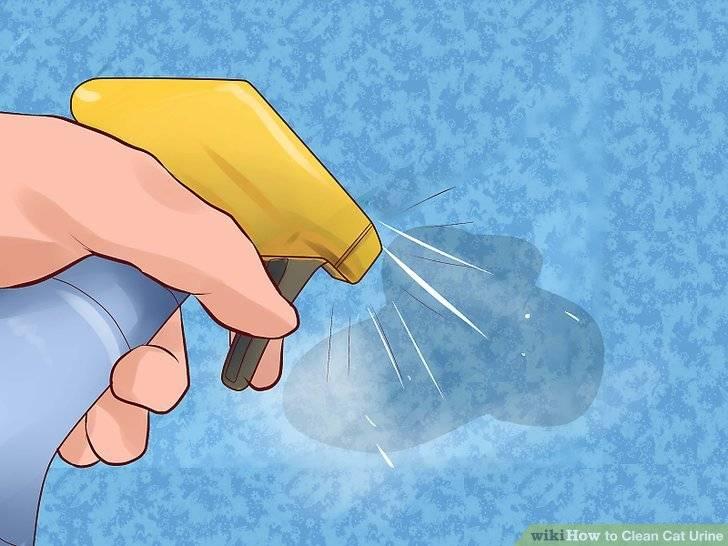 28+ советов ❔ как быстро вывести запах кошачьей мочи с дивана, если твой кот — скунс