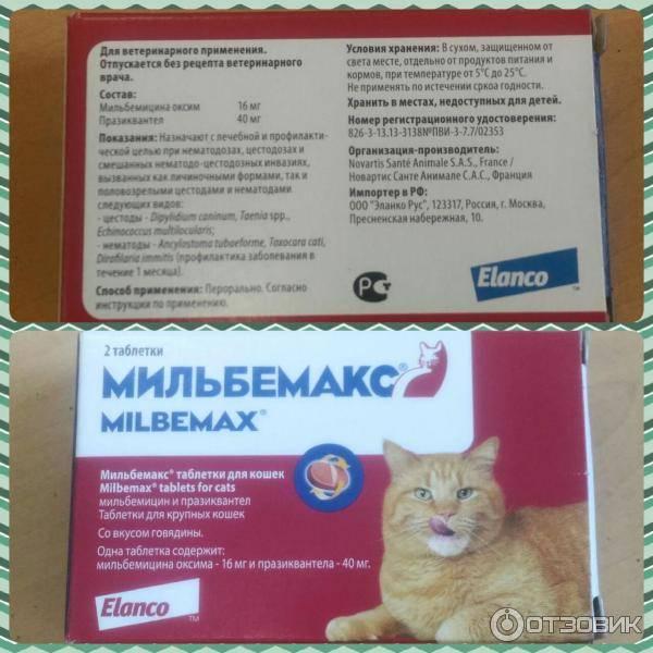 Мильбемакс для кошек инструкция по применению