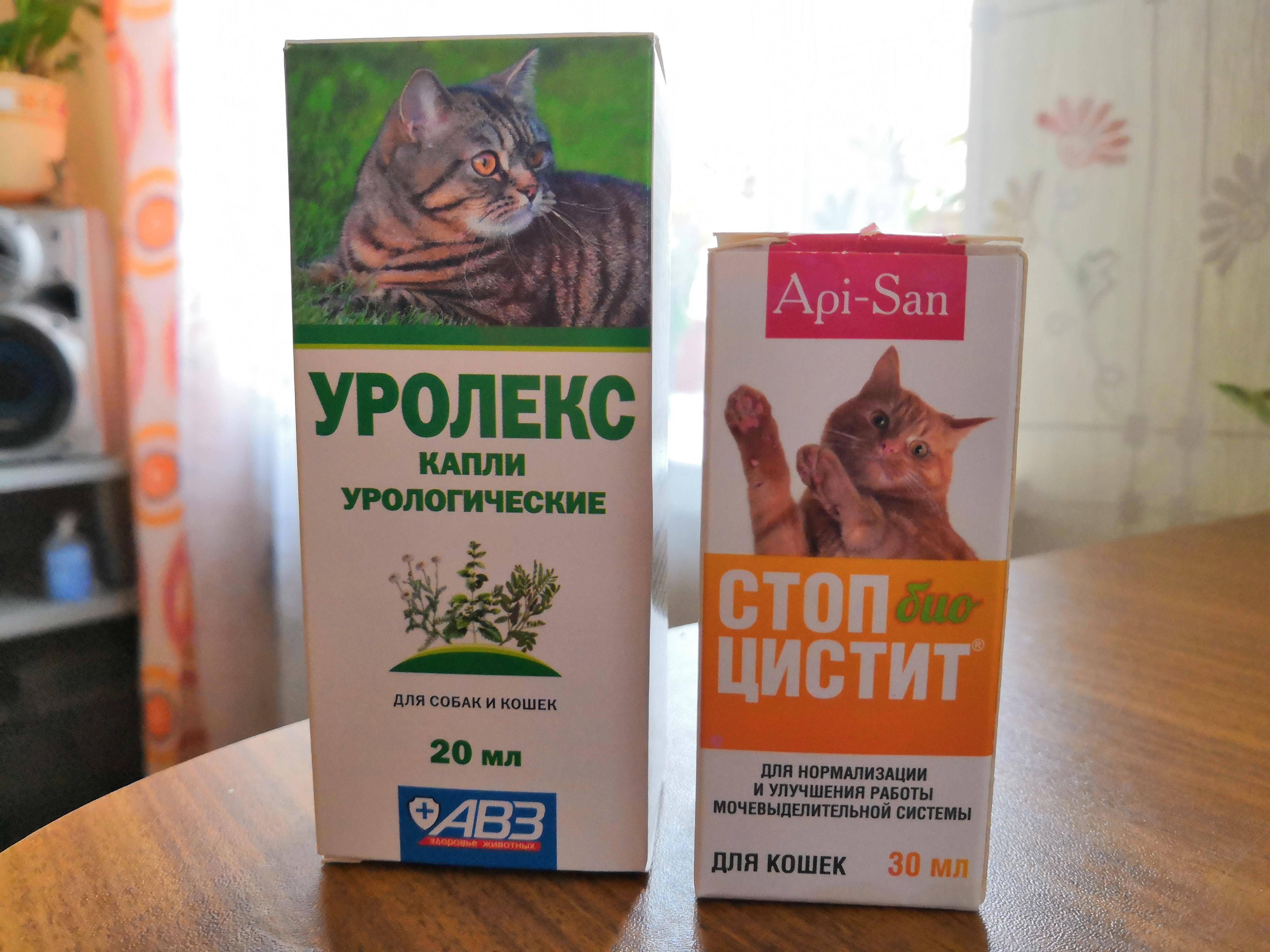 Уролекс для кошек