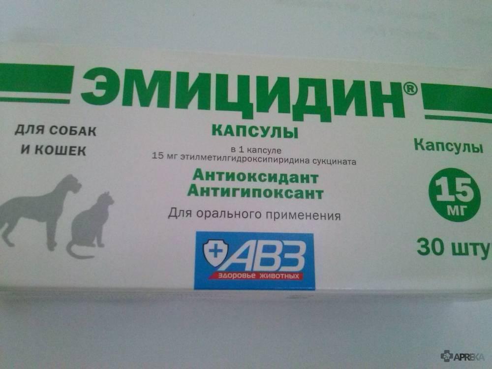 Эмицидин для кошек: состав, форма выпуска,применение, дозировка, противопоказания, аналоги