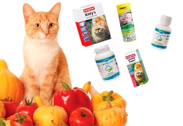 Витамины омега для кошек - описание и для чего применяются - kotiko.ru