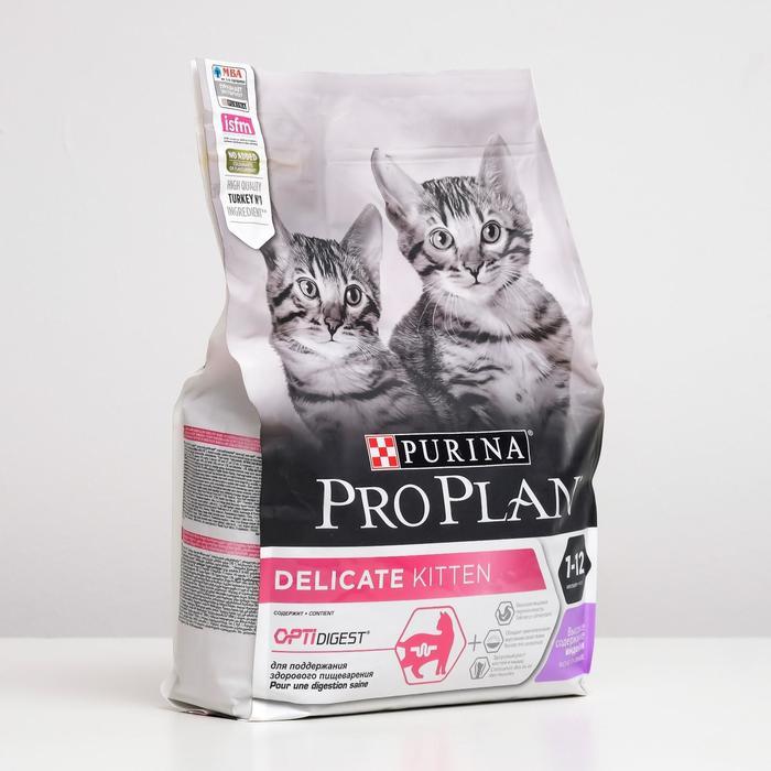 Корм для кошек для чувствительного пищеварения: обзор, виды, особенности и отзывы