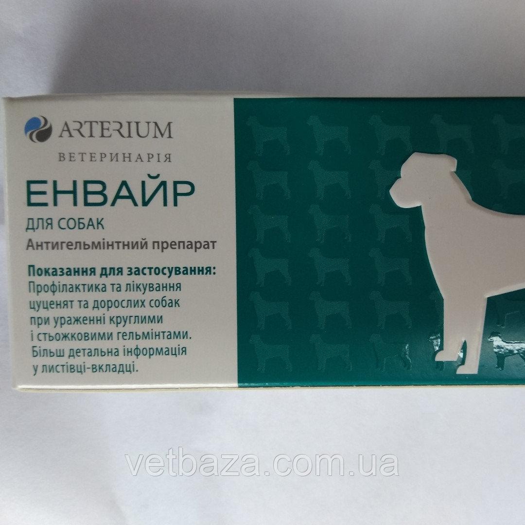 """""""ветспокоин"""" для кошек: отзывы владельцев, состав препарата и инструкция по применению"""