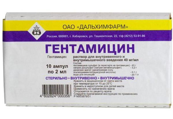 Гентамицин для кошек: инструкция по применению