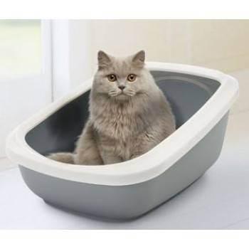 Какой наполнитель для кошек лучше выбрать — варианты и критерии выбора