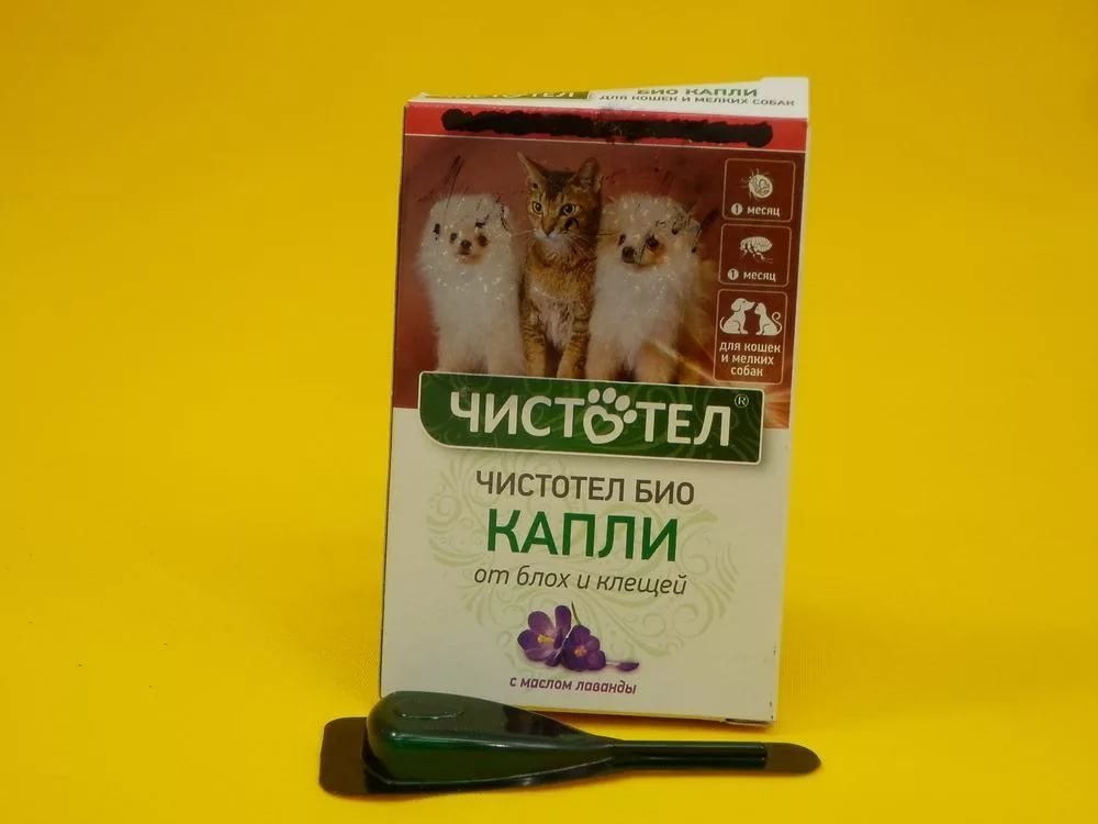 Капли для котят от блох: когда давать и какие лучше