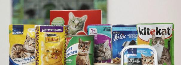 Из чего делают кошачий корм сухой и влажный?