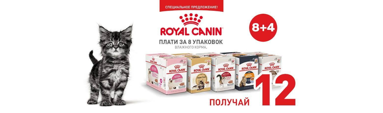 Продажа готового бизнеса - зоомагазина в москве