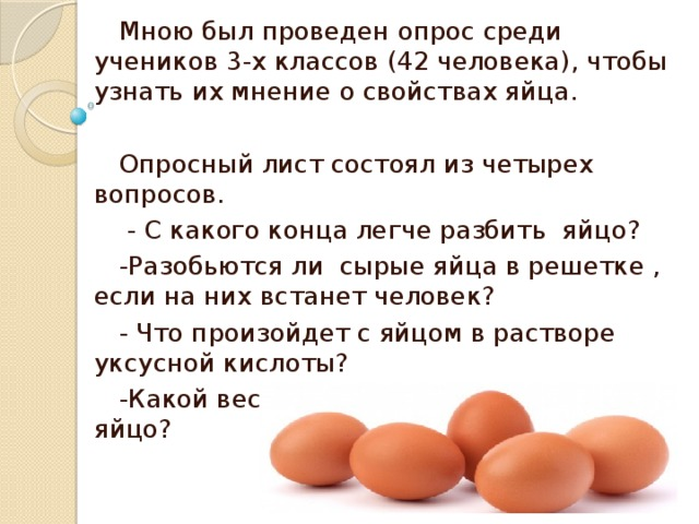 Можно ли котенку яйцо?