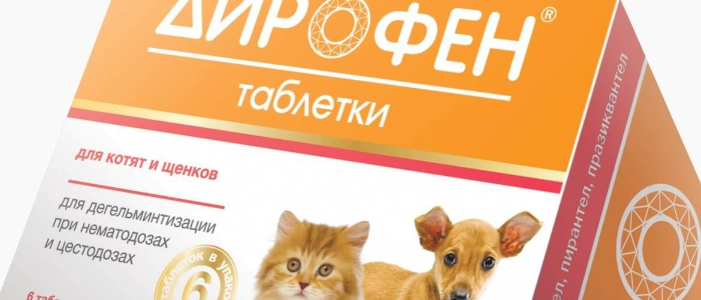?дирофен» для кошек — инструкция по применению