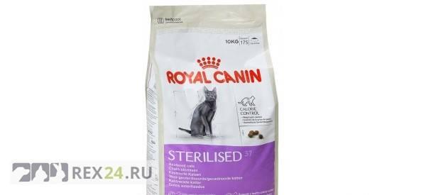 Что лучше - роял канин или проплан, хиллс, путина, какой корм подойдет кошкам?