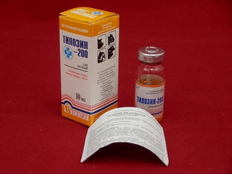 Тилозин 50 и тилозин 200: инструкция по применению в ветеринарии для птиц и животных
