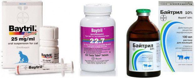 Препарат байтрил: состав и принцип действия, инструкция по применению, побочные эффекты и отзывы о лекарстве