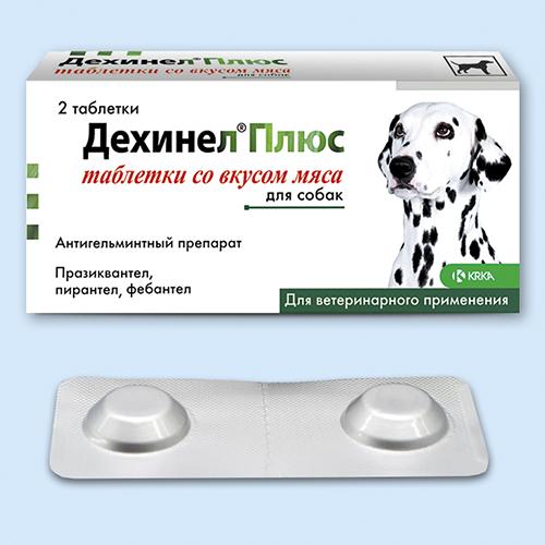 Препарат фоспренил для лечения кошек и собак, инструкция по применению