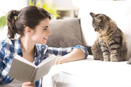 Почему кот или кошка гадит в неположенном месте, как отучить питомца это делать: советы специалистов, народные средства