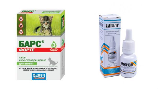Капли от ушного клеща для кошек и котов: на холку, в уши, лучшие и эффективные