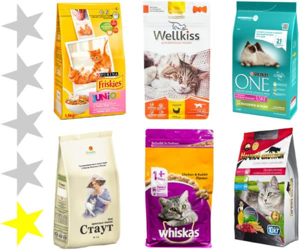 Сухие корма для кошек - их рейтинг, виды и особенности