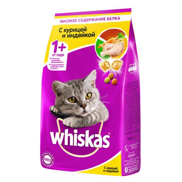 Влажный корм для стерилизованных кошек: характеристика, марки, выбор и режим питания