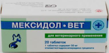 Мексидол-вет: инструкция по применению, отзывы, аналоги препарата