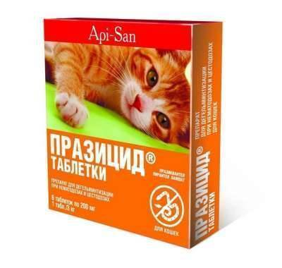 Есть ли аллергия на британских кошек