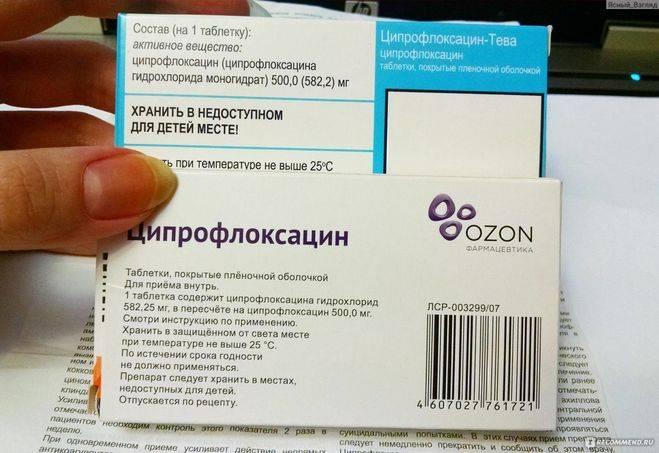 Ципрофлоксацин для кошек: инструкция по применению