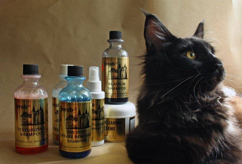 Royal canin сухой корм мейн кун 31 для кошек крупных пород