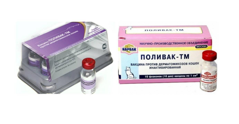 Поливак-тм для собак: инструкция по применению вакцины с дозировкой. стоит ли продолжать лечение, если после укола питомец хромает?