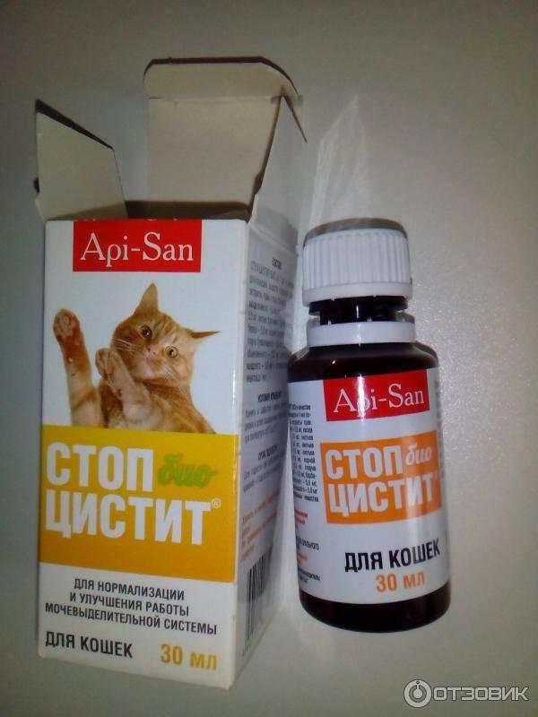 Кот баюн для кошек и котов: описание препарата, состав, форма выпуска, назначение, дозировка, противопоказания