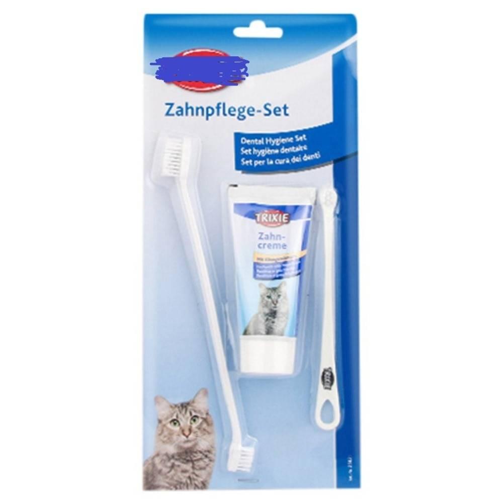 Как кошке почистить зубы в домашних условиях: чем чистить