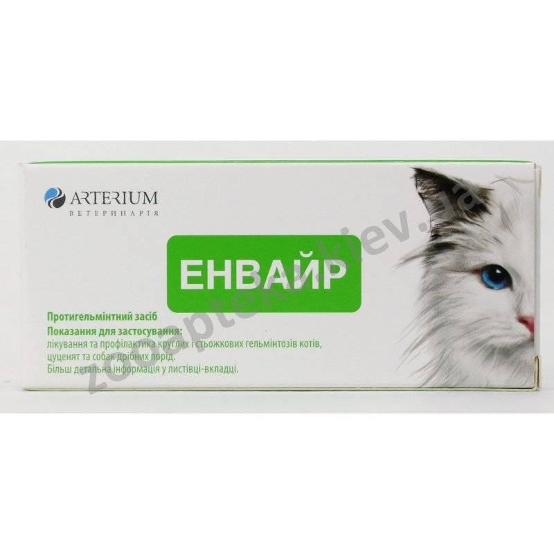 Ветспокоин для кошек: инструкция по применению, кому назначается, дозировка, ограничения