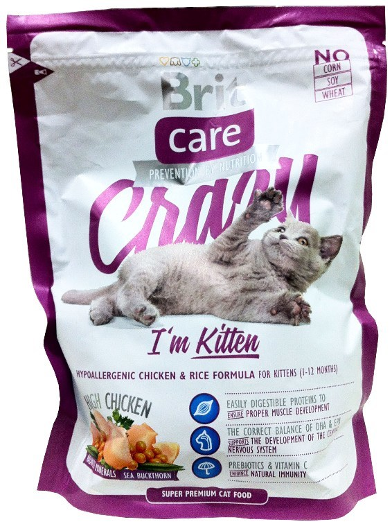 Чем кормить британского котенка | питание в домашних условиях