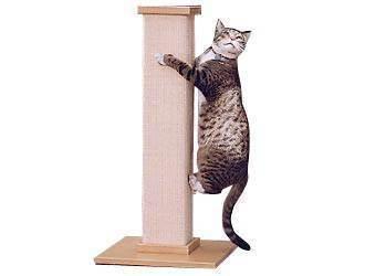 Зачем кошке необходима когтеточка и как ее изготовить самостоятельно?