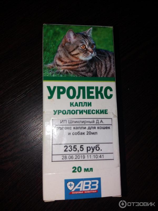 Уролекс для кошек: инструкция по применению, противопоказания к использованию