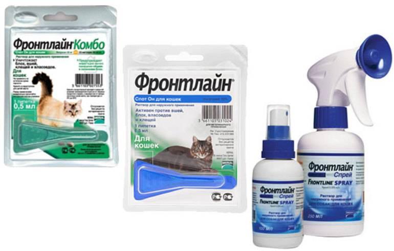 Фронтлайн для кошек и котов: инструкция по применению   цена, отзывы